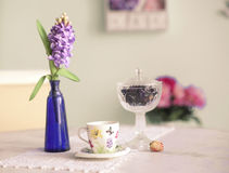 Still life with vase  hyacinth flowers tea cup rose and blue wal Stock Image