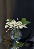 Vase with lily of the valley flowers Royalty Free Stock Photography