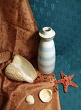 Still life with vase, sea shells and start fish. Still life with a white vase, sea shells and start fish Stock Photos