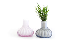Still life vases Royalty Free Stock Photos