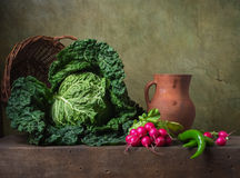 Still life with vegetables. Cabbage; radish and pepper Royalty Free Stock Photos