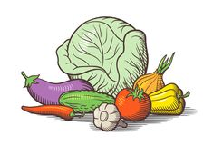 Still life with vegetables. Color Royalty Free Stock Photo