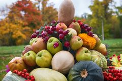 Still life of vegetables, flowers, yellow leaves, fruits in large vase stock photos