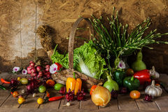 Still life  Vegetables, Herbs and Fruit. Royalty Free Stock Photo