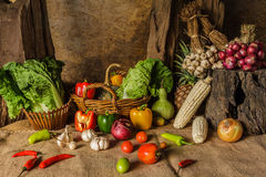 Still life  Vegetables, Herbs and Fruits. Royalty Free Stock Photo