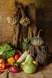 Still life  Vegetables, Herbs and Fruits. Stock Images