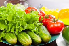 Still life of vegetables on plate. Focus on cucumber Royalty Free Stock Image