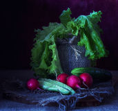 Still life with vegetables. Red radishes, cucumber ,tomatoes , salad Royalty Free Stock Photography