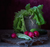 Still life with vegetables. Red radishes , sliced, tomatoes ,salad Royalty Free Stock Photo