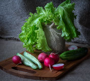 Still life with vegetables. Red radishes ,  tomatoes , salad Royalty Free Stock Photos