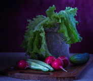 Still life with vegetables Stock Image