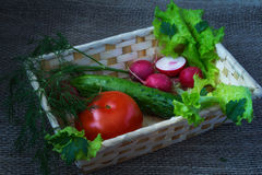 Still life with vegetables. Red radishes ,  tomatoes , salad Stock Photo