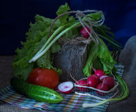 Still life with vegetables Royalty Free Stock Photo