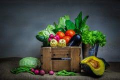 Still life vegetables stock photography
