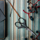 Still life. vintage. notebook, bunches of wild grapes, scissors on the old paper. close-up Stock Photo