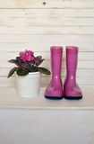 Still life with violet and boots Royalty Free Stock Photography