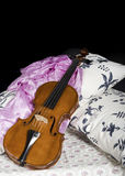 Still life with violin. Cremonese violin in a still life composition Stock Photography