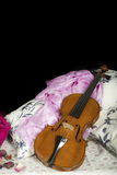 Still life with violin. Cremonese violin in a still life composition Stock Image