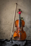 Still life with violin and roses Stock Photography