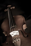 The still life violin sepia tone black Royalty Free Stock Photography