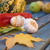 Still-life w. Ith garlic; pepper; ornamental pumpkin; maple leaves and seeds on old garden table Royalty Free Stock Photos