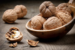 Still-life with walnuts Royalty Free Stock Photography