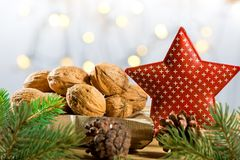 Still life with Walnuts and Christmas Star. Still life with Walnuts and Red Christmas Star stock photos