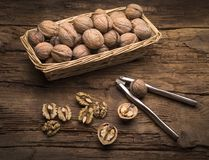 Still life with walnuts Stock Photography