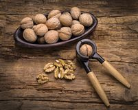 Still life with walnuts Royalty Free Stock Image