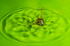 Still life with water Stock Photography