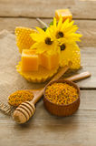 Still life of wax, honeycombs, flowers and pollen granule Royalty Free Stock Image