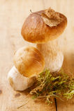 Still life with white boletus mushrooms Stock Image