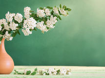 Still life with white flowers Royalty Free Stock Photography