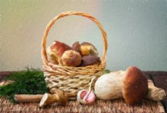 Still life with white mushrooms. Royalty Free Stock Images
