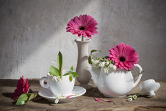 Still life with white snowdrops and gerbera Royalty Free Stock Image