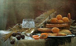 Still-life with white wine, apricots and flat cakes. Still-life with white wine, fresh apricots and flat cakes stock image