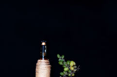 The still life with white wine in glass bottle on black background. Glasses of wine with fresh grapes. Bottle and footed glass. Fr Royalty Free Stock Photography