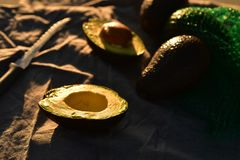 Ripe avocado cut into halves. Still life with whole avocados and one avocado cut into halves Royalty Free Stock Images