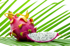 Still life of whole and sliced pitahaya on a green palm leaf Royalty Free Stock Images
