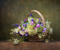 Still life with wild flowers Royalty Free Stock Images