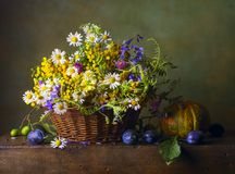 Still life with wild flowers. In a basket and pumpkin stock photos