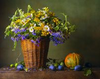 Still life with wild flowers Stock Photo