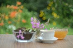 Still life with willow-tea royalty free stock images