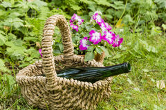 Still life with wine bottle in a garden Stock Image