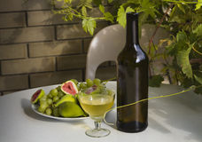 Still life - wine,grapes and figs outdoors. Stock Image