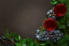 Still life with wineglasses, bottles, grapes and leaves Stock Images