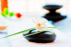 Still Life With A Black Stone And A Flower Stock Images