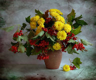 Still Life With A Wild Ash And Chrysanthemums Royalty Free Stock Images