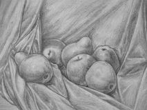 Free Still Life With Apple And Pear – Pencil Drawing Royalty Free Stock Image - 101827426