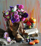 Still Life With Asters In Boots Stock Photos